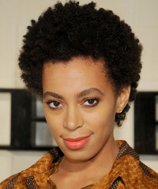 Short Afro Natural Hairstyles - Best Short Hair Styles