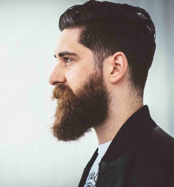 28+ [ Short Hair Long Beard ]