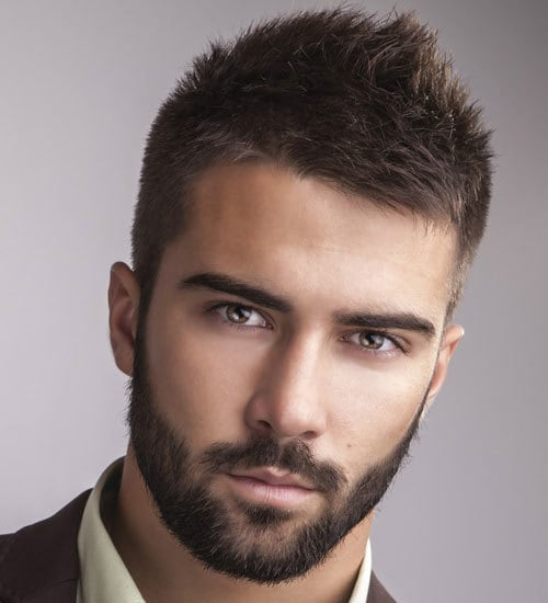 mens Professional Beard Styles with Mustaches