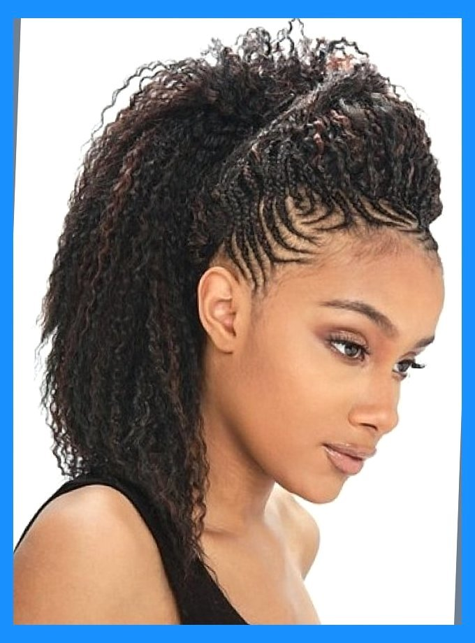 50 Best Black Braided Hairstyles To Charm Your Looks 2016 Designideaz Ebony Braids Hairstyles - Liked