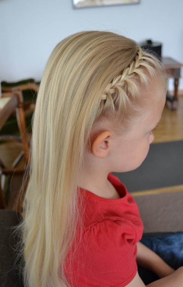 Dutch French Lace Braid hairstyle