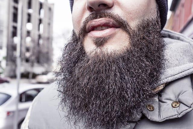 men full beard style you like