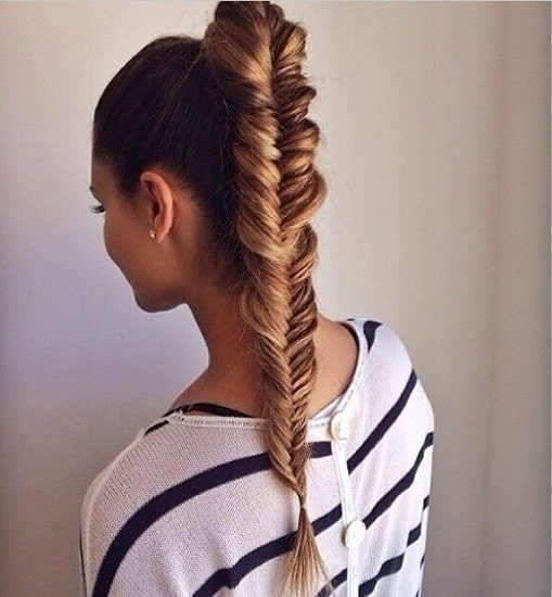 Fishtail Pony Hairstyle for Wet hair