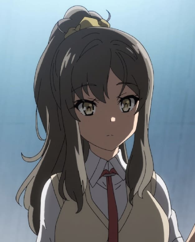 21 Of The Cutest Anime Girls With Ponytails Hairstylecamp