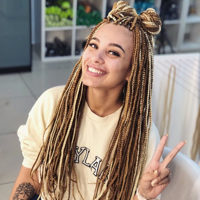 21 Amazing Box Braids Hairstyles With Color (2021 Trends)