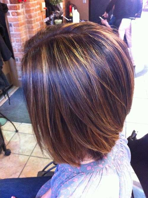 light brown highlights on dark browk hair 2