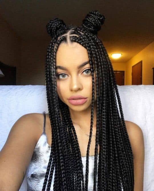 81 Classy Micro Braids Hairstyles For 2021 Hairstyle Camp