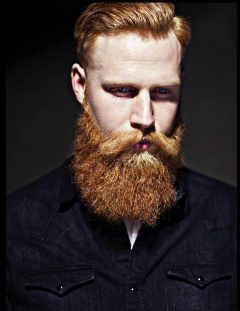 Garibaldi Beard Is The Ultimate Curly Beard Style. If You Want To Attain A  Fresh Yet Very Trendy And Refined Look Then Garibaldi Is The Best Choice  For You.